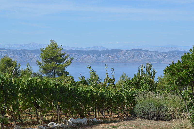 View over Brac
